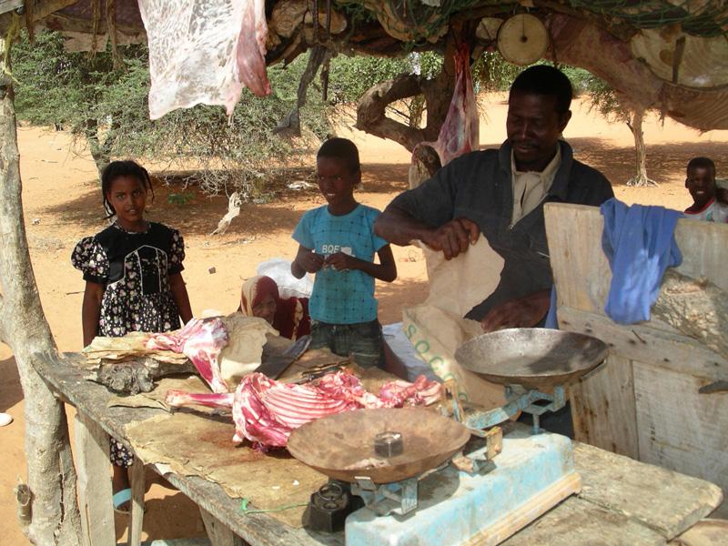 kottbutik-mauretanien