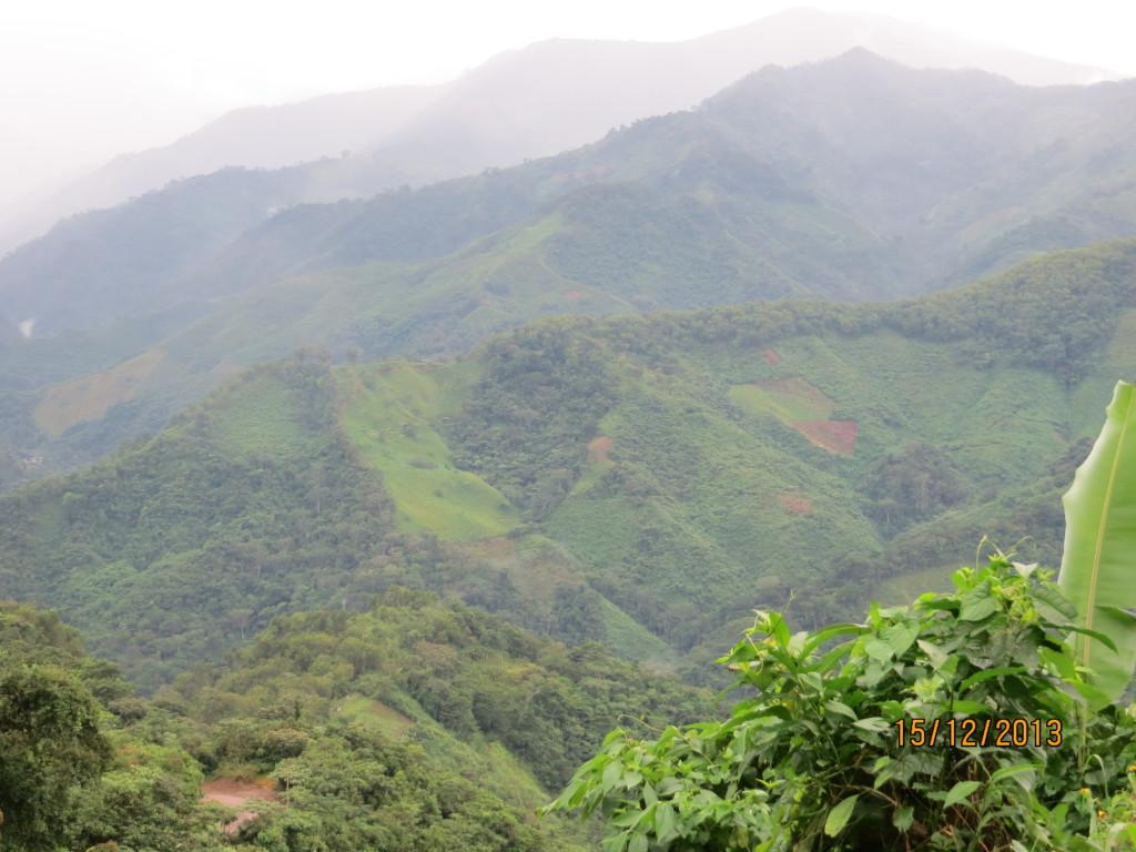 Bild 6 Utsikt från min lilla koja